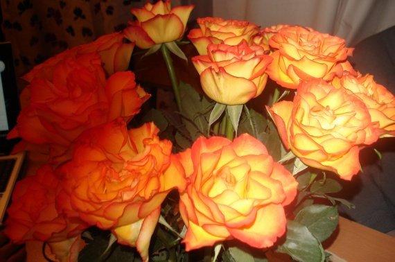 roses orangées ourlées bouquet