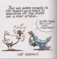 poule et pigeon cot-cot-5510901050