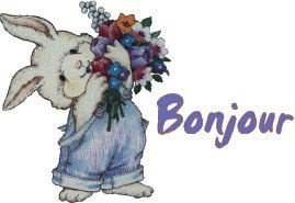 bonjour lapin fleur