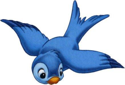 oiseau bkeu