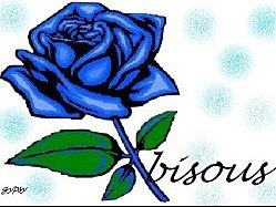 bisous rose bleue