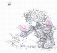 nounours cueille roses