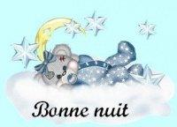 nounours bonne nuit lune