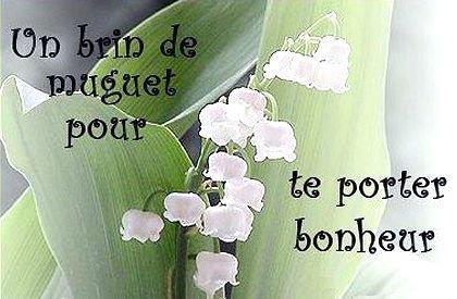 Muguet un brin pour te porter bonheur fleurs vaivaine photos club doctissimo - Un brin de muguet porte bonheur ...