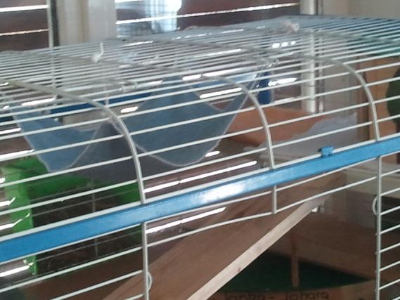 l'étage dodo, hamac + maison