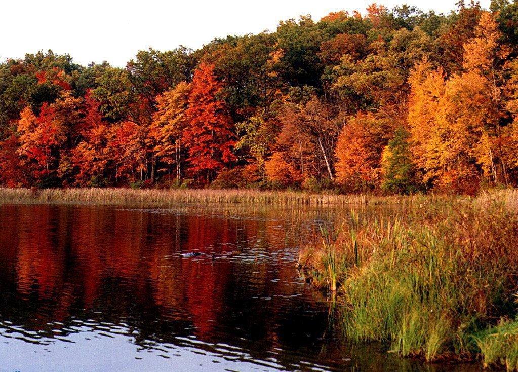 L'automne Couleurs-automne-miroir-automne-big
