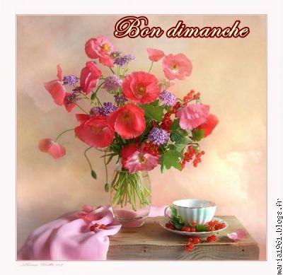 http://images.doctissimo.fr/1/maison-jardin/coquelicots-2/photo/hd/6694610669/154358272d7/coquelicots-2-joli-bouquet-dimanche-big.jpg