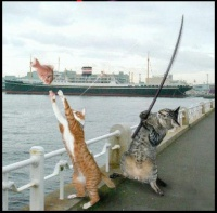 dur dur la pêche!!