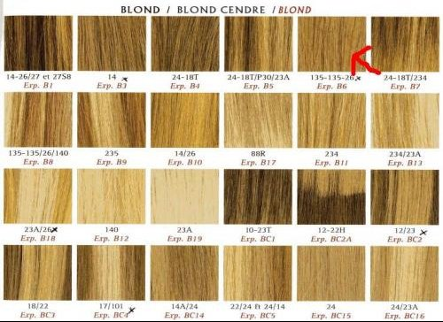 Coiffure techniques question r ponse d 39 un professionel page 3 coiffure et coloration - Les differents blonds ...