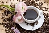 6541650-theme-de-cafe-image-haute-resolution-avec-cafe-et-de-la-fleur - Copie