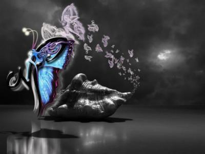 Photo Zen  Butter-bo-papillon-big