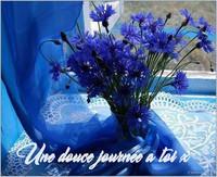 bouquetfleursbleus1