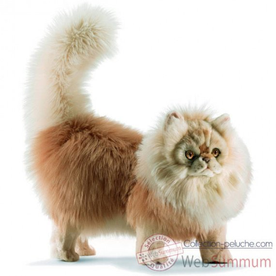 Anima-Peluche-chat_persan-5011