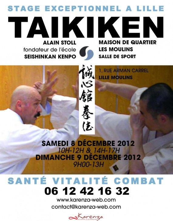 Stage Taikiken decembre 2012