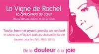 La vigne de Rachel