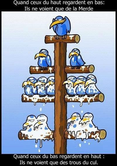 Definition_de_la_Hierarchie