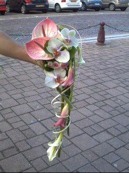 Bouquet que je préfère