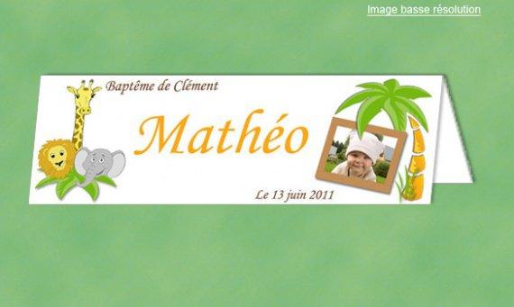 Marque-place-bapteme-jungle-436-2-big-1-www-faire-part-emotion-fr