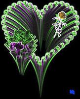 Coeur fleurs fond noir