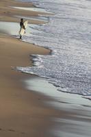 surf-549905_960_720