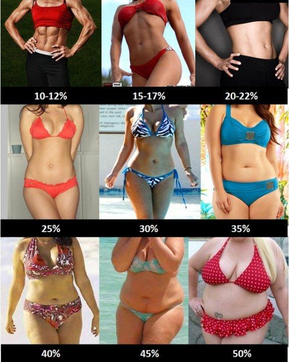 Pourcentage de masse grasse chez la femme
