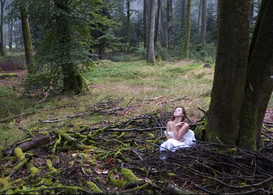 mariage-foret