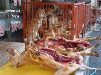 barbarie souffrance psychologique en sus !!!!!!!!!!!!