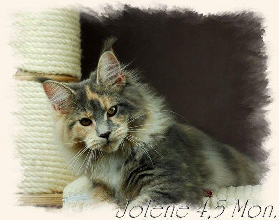 jolene4$2C5m5
