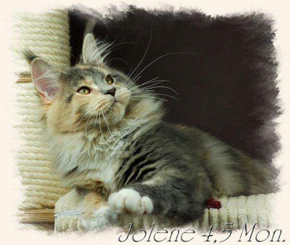 jolene4$2C5m6