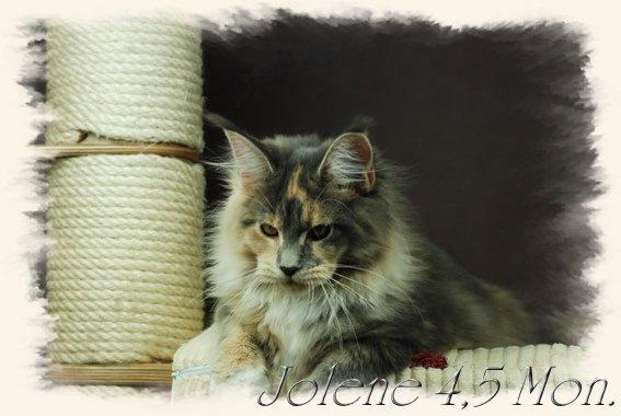jolene4$2C5m7