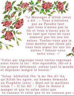 MES ISLAM2