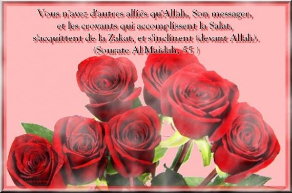 l'amour bienfait d'Allah