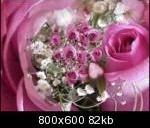 bouquetrose9cwzp3_th