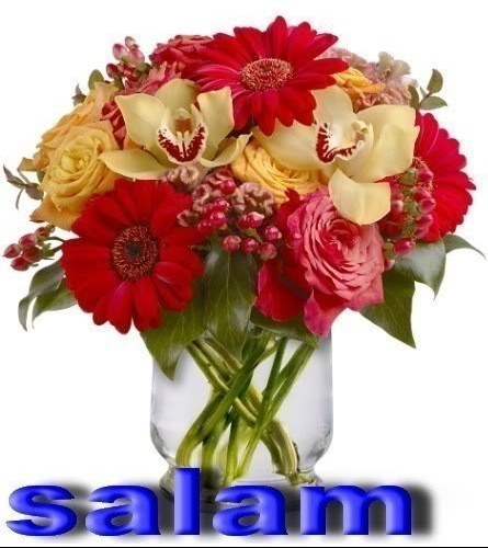 SALAM FLEURS