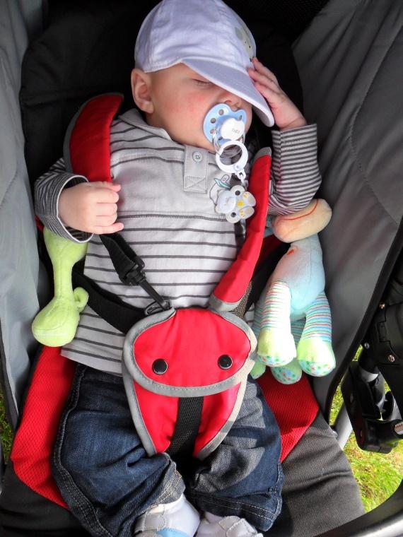 A partir de quel age la poussette b b s de janvier - Porte bebe babybjorn a partir de quel age ...