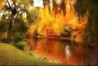 automne Québec 27