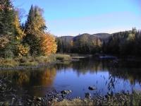 automne Québec 31