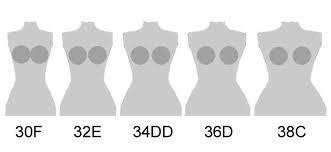 Équivalence tailles