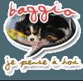 baggio2