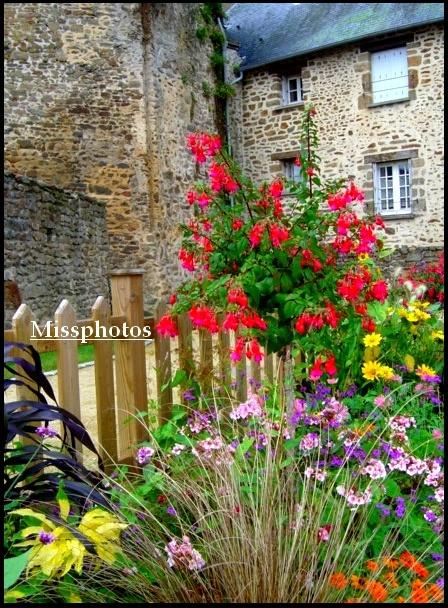 Photo d 39 un tout petit parterre fleuri photo originale photo effet pointillisme - Idee petit jardin fleuri brest ...