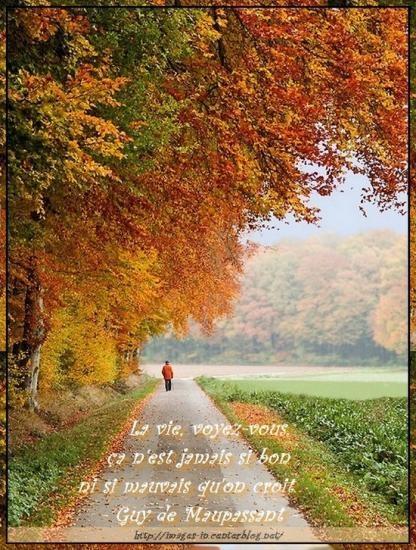 automne-roseric-citation-maupassant