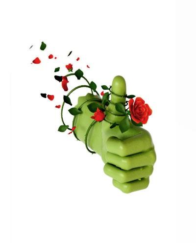 Expressions intraduisibles jeux page 285 la salle d tente forum sant - Avoir la main verte ...