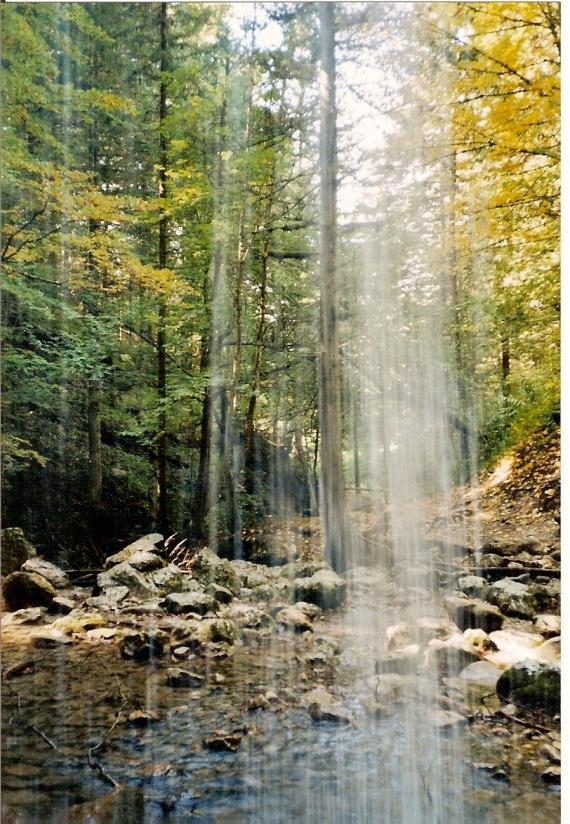derrière la cascade de la Fauge, l'automne