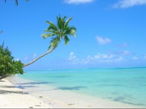 palmiers-plages-autres-mers-et-plages-tahiti-polynesie-francaise-6866571308-843230
