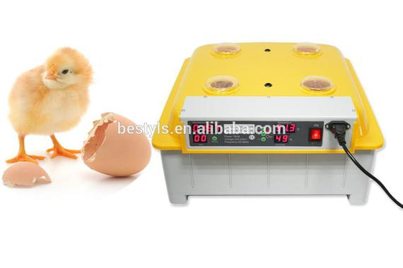 coNew_design_Egg_Incubator_JANOEL8_48_Poultry