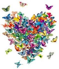 Coeur de papillon