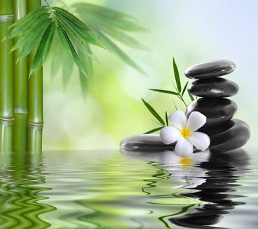 Instant Zen