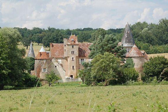 Château de Châteauneuf-sur-Cher dans le Cher