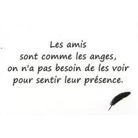 L'amitié,Des mots,des citations que j'aime...