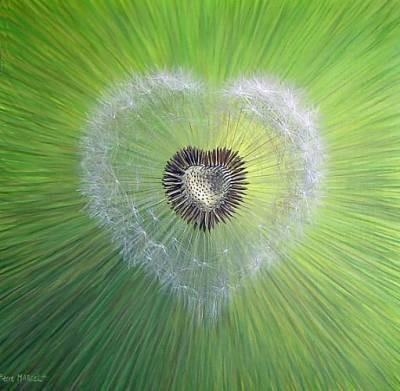 Cœur et nature